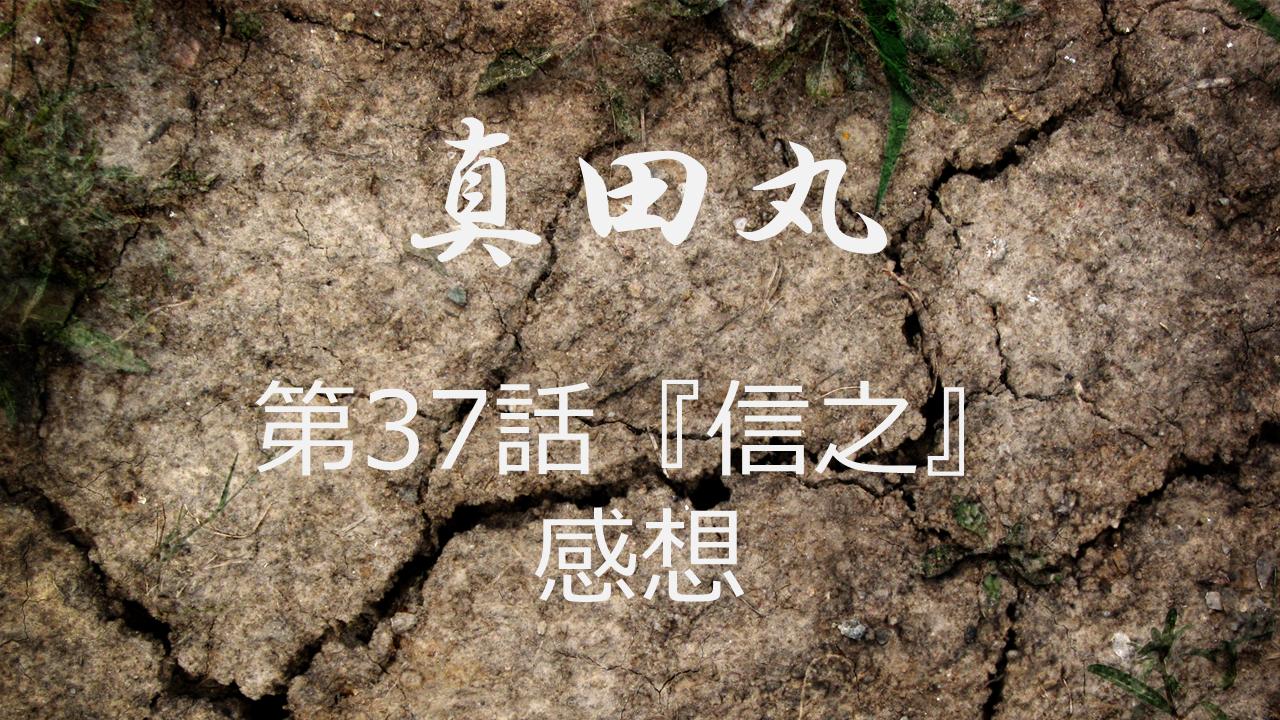 真田丸感想第37話「信之」