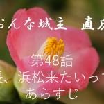 おんな城主直虎あらすじ第48話「信長、浜松来たいってよ」