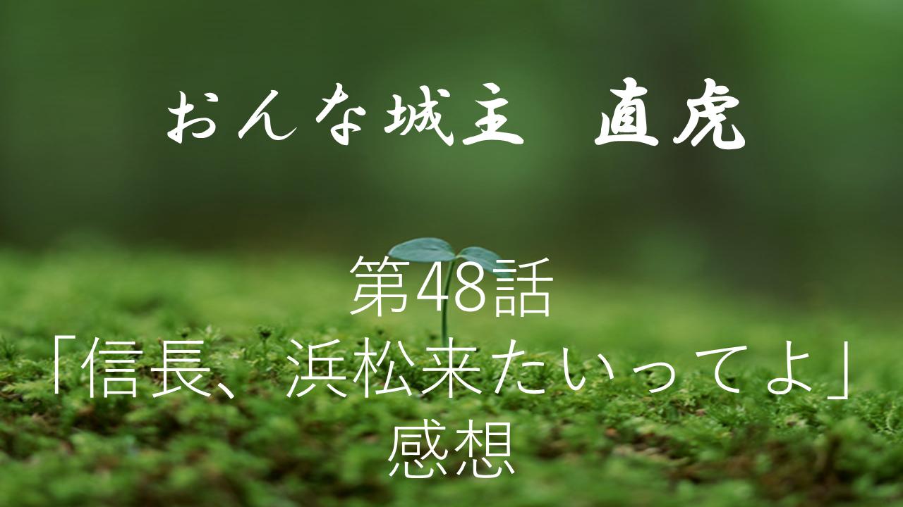 おんな城主直虎感想第48話「信長、浜松来たいってよ」