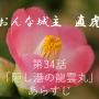 おんな城主直虎 第34話のあらすじとネタバレ!「隠し港の龍雲丸」